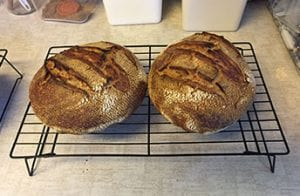 Bread Made with Kernza Grain
